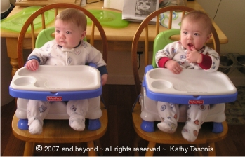 Twin Highchair Guide See Options For Highchairs For Twins
