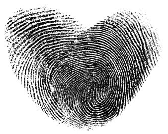 Identical Twins Fingerprints