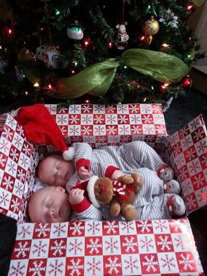 Photo of Carter and Brody 4 months old
