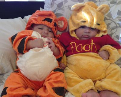 Best Friends Tigger & Pooh
