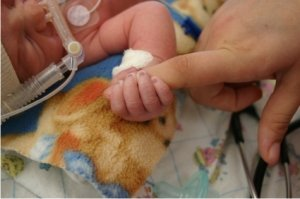 premature baby with moms hand